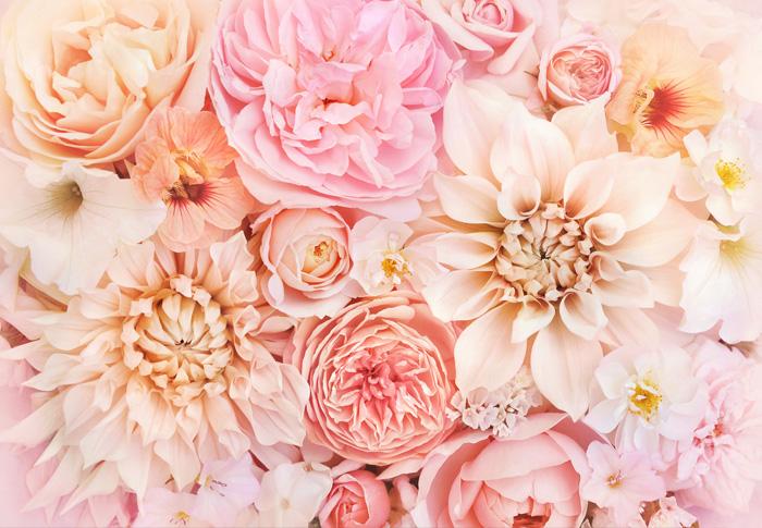 Livraison de fleurs dans le Tarn-et-Garonne
