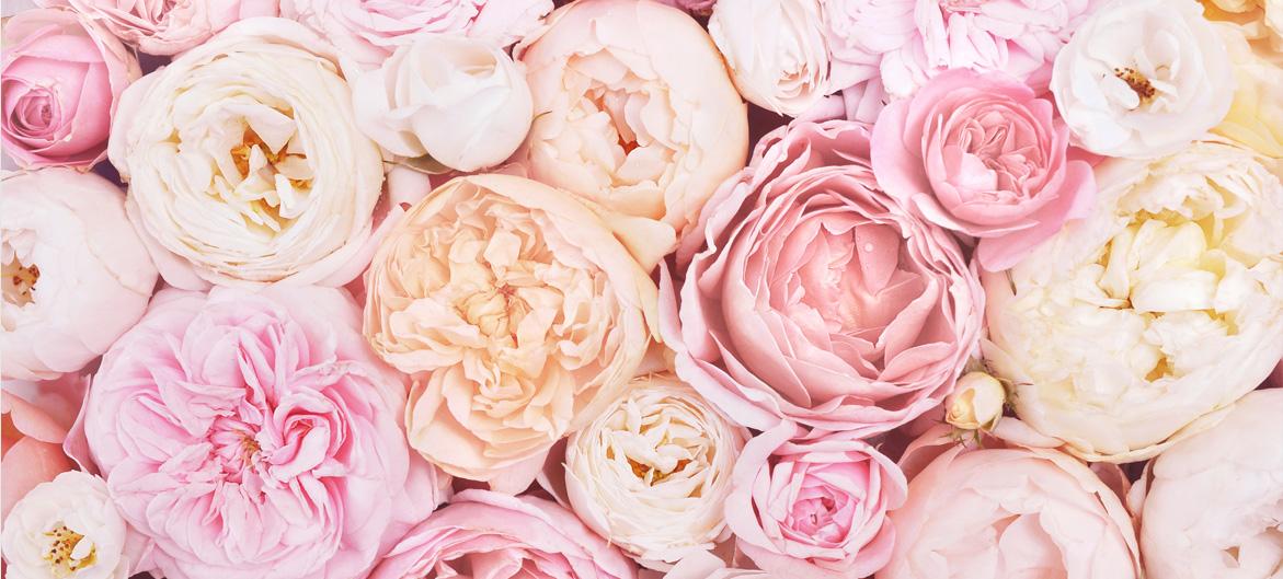 Artisan fleuriste à Castelsarrasin