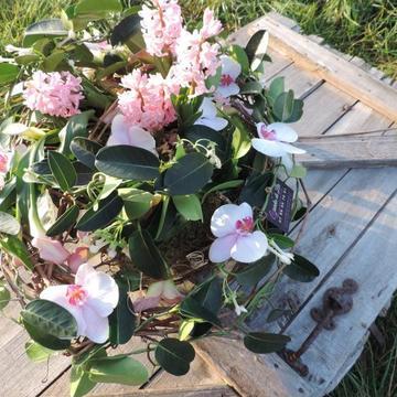 Centre de table fleuri à Castelsarrasin